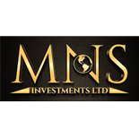 MNS Investment
